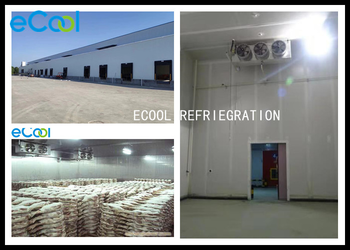 Frozen Meat Cold Storage , Steel Structure Cold Storage For Meat Products