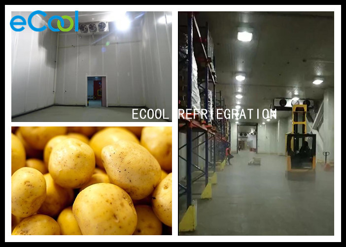 Customized Size Commercial Potato Storage / Potato Cold Storage Project