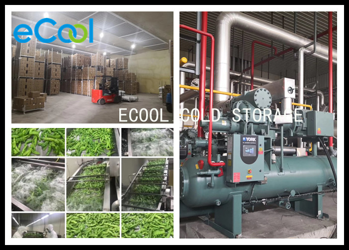Low Temperature Multipurpose Cold Storage For Vegetable Processing PU Panel